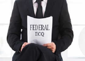 federal ECQs: narrative statement sample