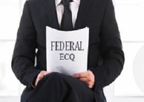 federal ECQs: narrative statement sample