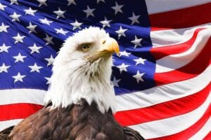 American Eagle Day Eagle with the American flag at tha back