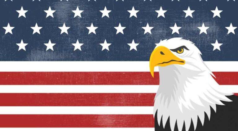 symbol of American patriotism, the US flag and bald eagle, meaningful to hopefuls with a political resume in their job search