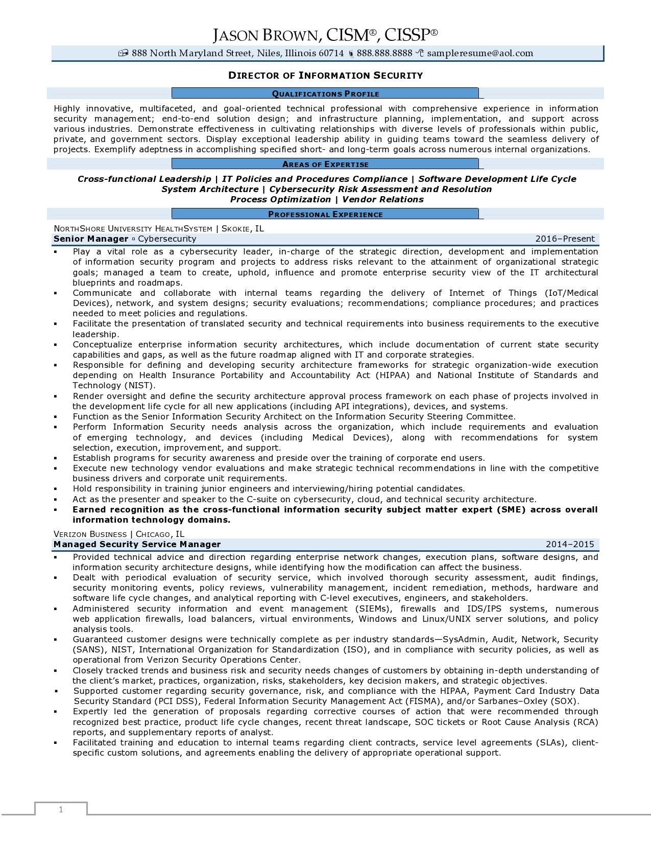 Director of Information Security Resume Examples page 1